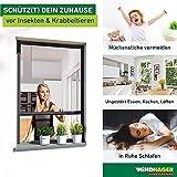 Windhager Insektenschutz Fenster Rollo Plus, Fliegengitter Alurahmen für Fenster, individuell kürzbar, anthrazit, 130 x 160 cm, 03879 - 4