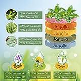 Janolia Citronella Armbänder, 12 Stück Armband und 32 Stück Aufkleber, Hergestellt aus pflanzlichen ätherischen Ölen, Sicheres für Indoor, Outdoor, Kinder, Erwachsene - 5