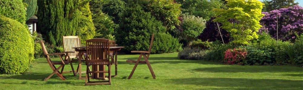 Garten von Mücken befreien
